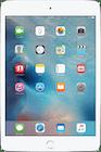 iPad Mini 4 (2015) Wi-Fi