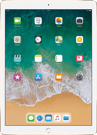 "iPad Pro (2017) 12.9"""
